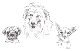 Dog Caricatures
